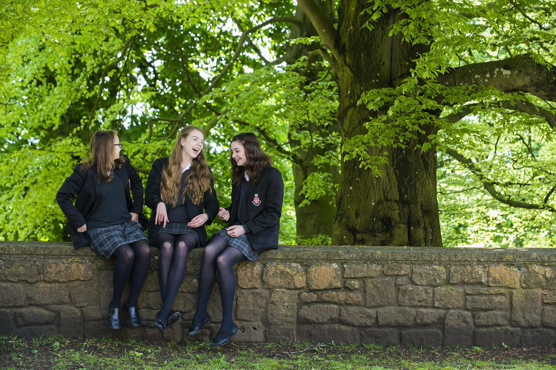 Open Mornings, Taster Days and Events